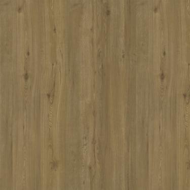 Vinylové podlahy Ecoline Click 23981 - Dub scape