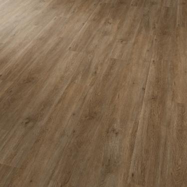 Vinylové podlahy Projectline 55201 Dub rustikal