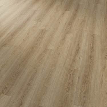 Vzorník: Vinylové podlahy Projectline Click 55205 4V Dub přírodní