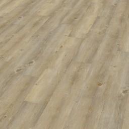 Vzorník: Vinylové podlahy Wineo 600 Wood  Borovice Toscany DB00007