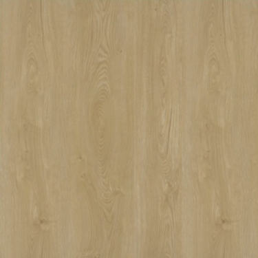 Vzorník: Vinylové podlahy Zámková vinylová podlaha Ecoline Dub champagne 401
