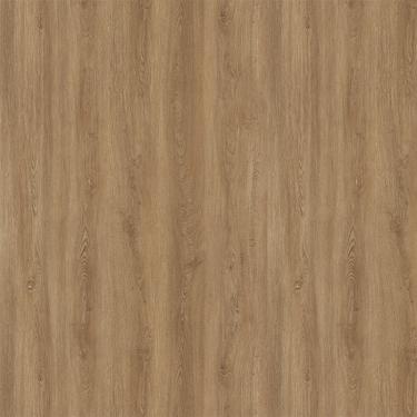 Vinylové podlahy Zámková vinylová podlaha Ecoline Dub zlatý 179-02